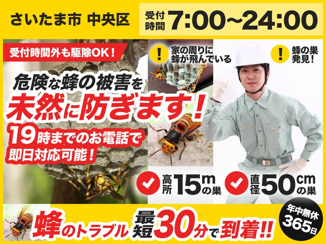 蜂の巣駆除救Q隊.24【さいたま市 中央区エリア】のメイン画像