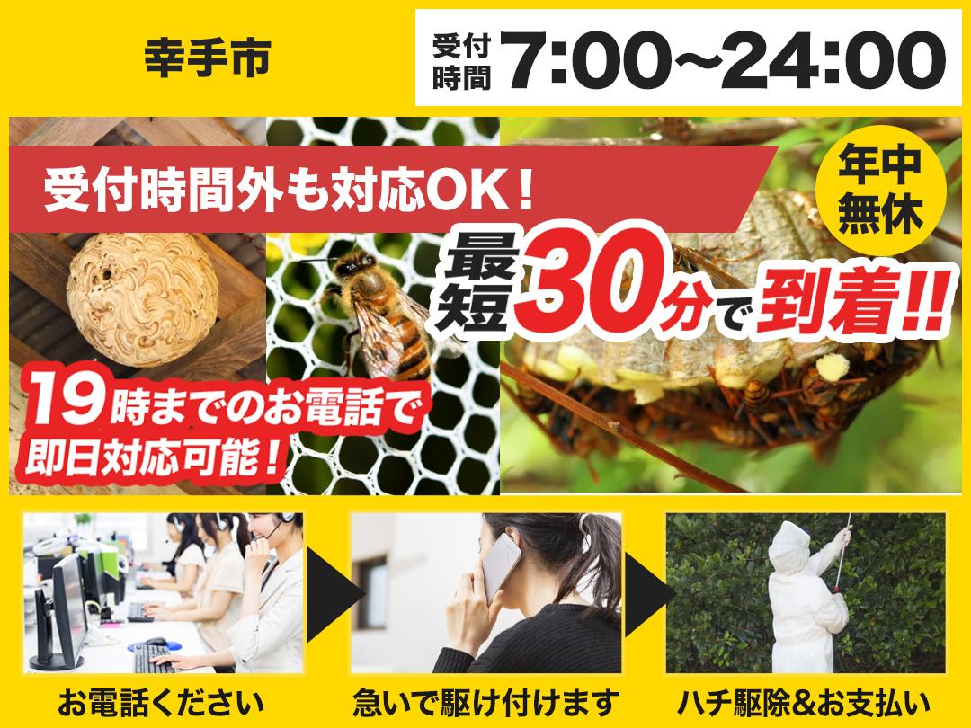 蜂の巣駆除救Q車.24【幸手市エリア】のメイン画像