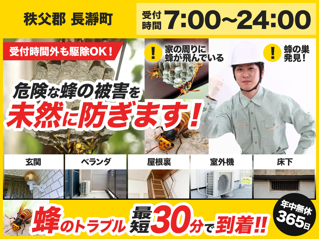 蜂の巣駆除出張救急車【秩父郡 長瀞町エリア】のメイン画像