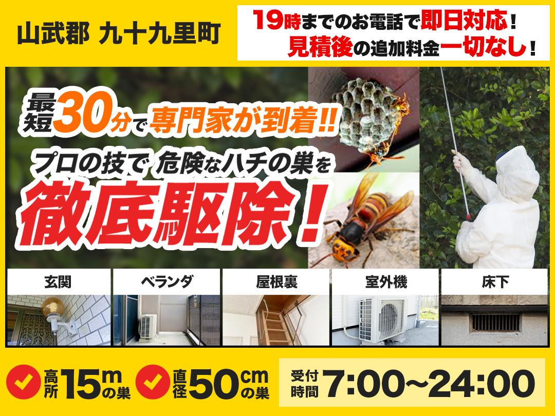 蜂の巣トラブル救Q車.24【山武郡 九十九里町エリア】のメイン画像