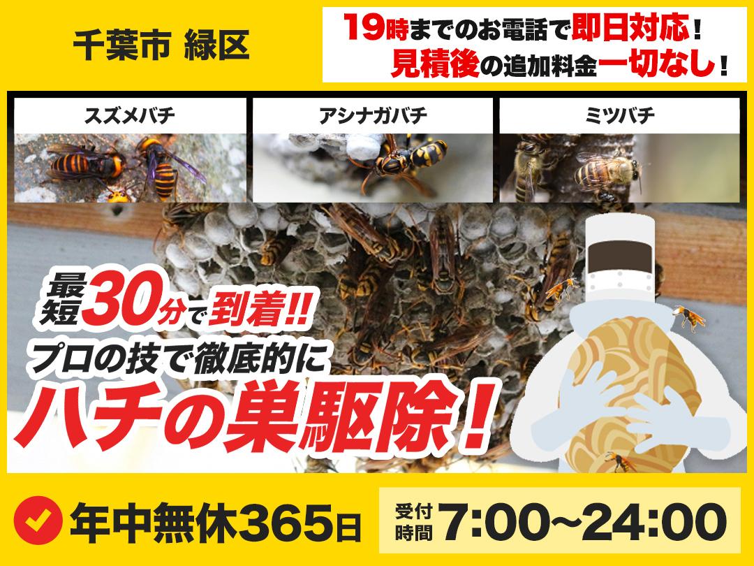 蜂の巣トラブル救急車.24【千葉市 緑区エリア】のメイン画像