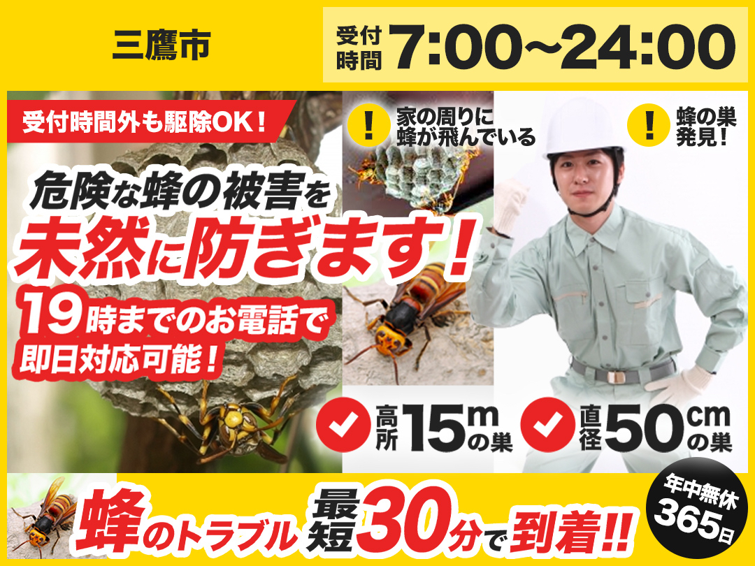 蜂の巣駆除出張救Q隊.24【三鷹市エリア】のメイン画像