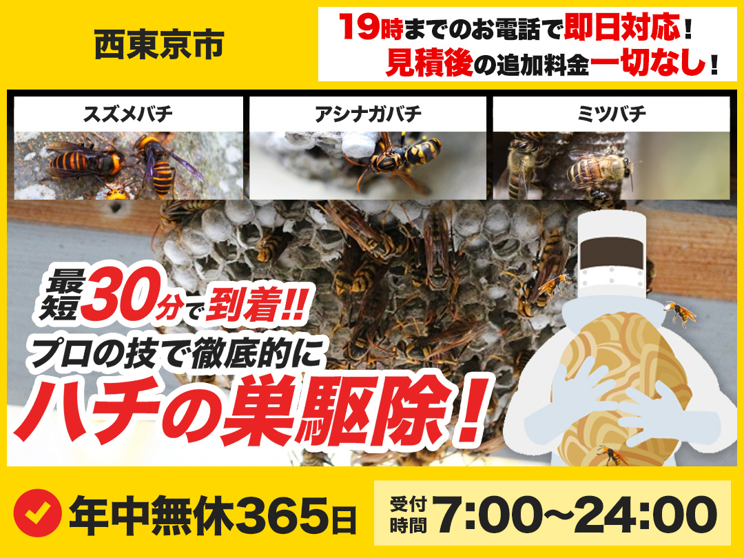 蜂の巣駆除専門救急車【西東京市エリア】